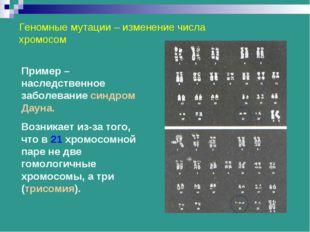 Геномные мутации – изменение числа хромосом Пример – наследственное заболеван