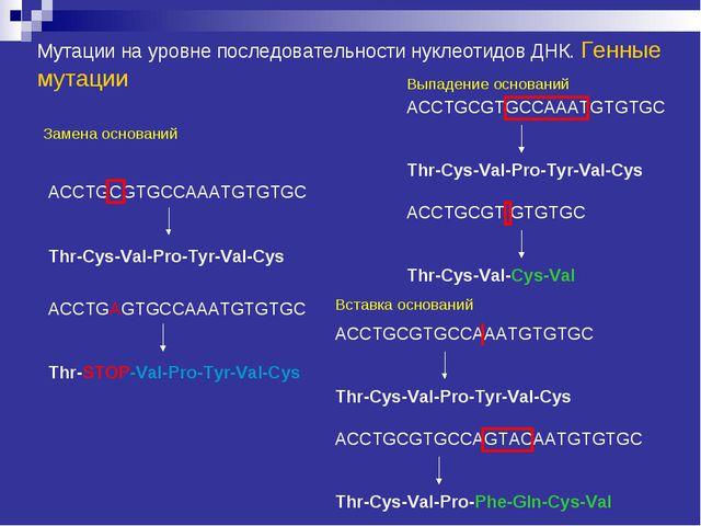 Мутации на уровне последовательности нуклеотидов ДНК. Генные мутации Замена о...