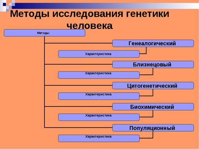 Методы исследования генетики человека