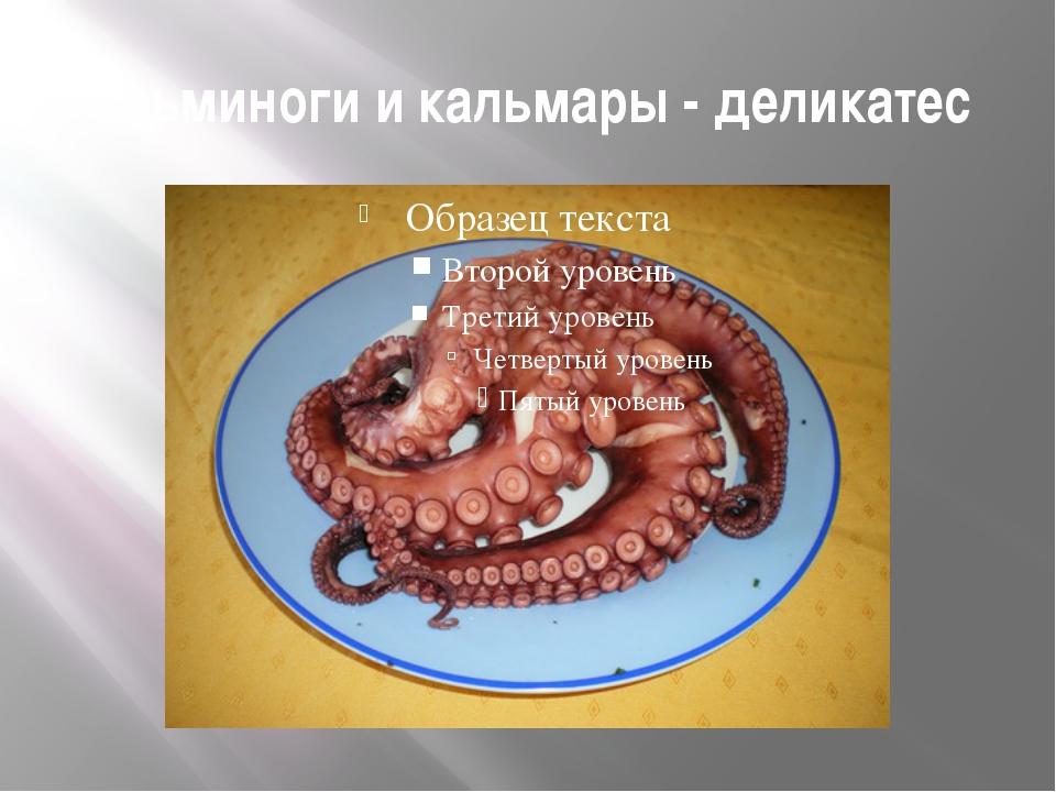 Осьминоги и кальмары - деликатес