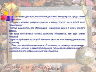 Г.В.Нечукина, 2014 Социальная адаптация, психолого-педагогическая поддержка,