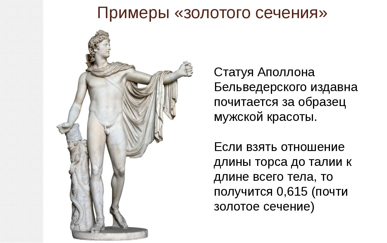Примеры «золотого сечения» Статуя Аполлона Бельведерского издавна почитается...