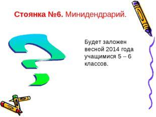 Стоянка №6. Минидендрарий. Будет заложен весной 2014 года учащимися 5 – 6 кла
