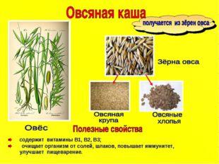 содержит витамины B1, В2, В3; очищает организм от солей, шлаков, повышает им