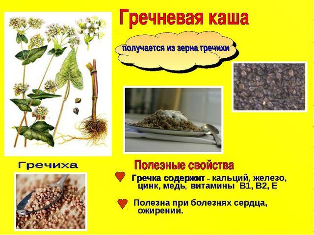 Гречка содержит – кальций, железо, цинк, медь, витамины В1, В2, Е Полезна пр...