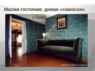 Малая гостиная: диван «самосон»