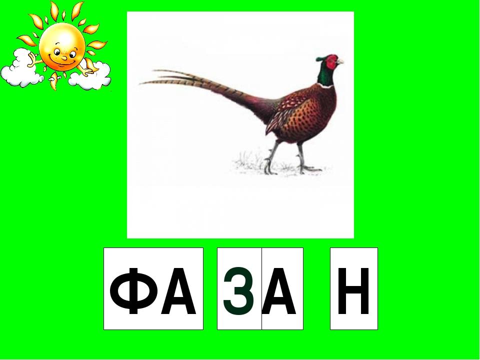 ФА Н ..А З