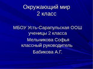 Окружающий мир 2 класс МБОУ Усть-Сарапульская ООШ ученицы 2 класса Мельникова