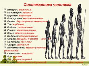 Систематика человека Империя: клеточные Подимперия: ядерные Царство: животны