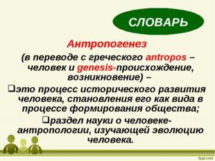 Антропогенез (в переводе с греческого antropos –человек и genesis-происхожден