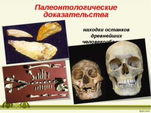Палеонтологические доказательства находки останков древнейших человекообразны