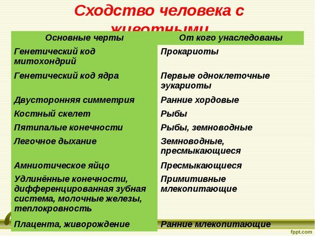 Сходство человека с животными Основные чертыОт кого унаследованы Генетически...