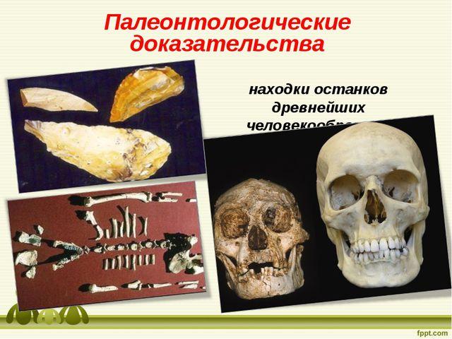 Палеонтологические доказательства находки останков древнейших человекообразны...