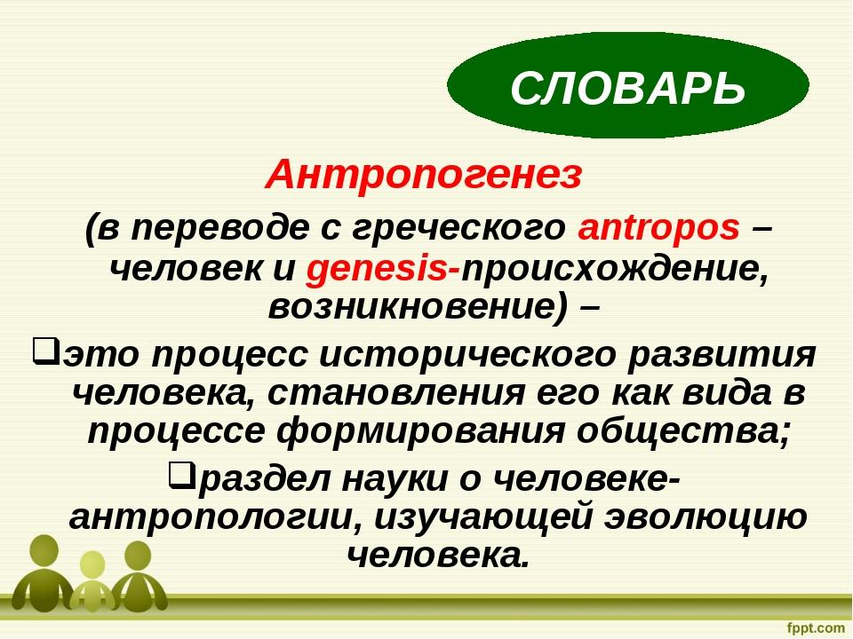 Антропогенез (в переводе с греческого antropos –человек и genesis-происхожден...