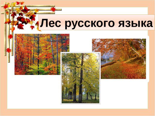 Лес русского языка
