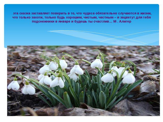 …эта сказка заставляет поверить в то, что чудеса обязательно случаются в жизн...