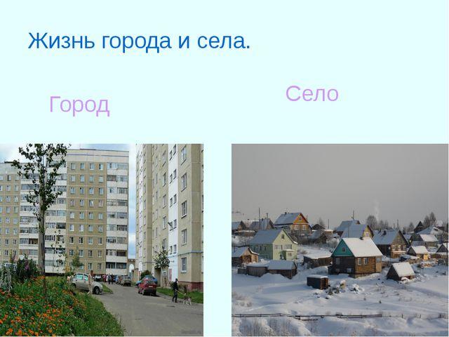 Жизнь города и села. Город Село