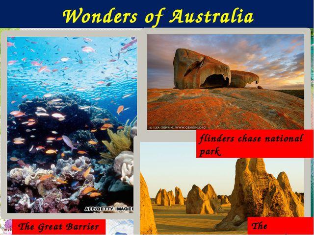 Wonders of Australia The Great Barrier Reef The Pinnacles flinders chase nat...