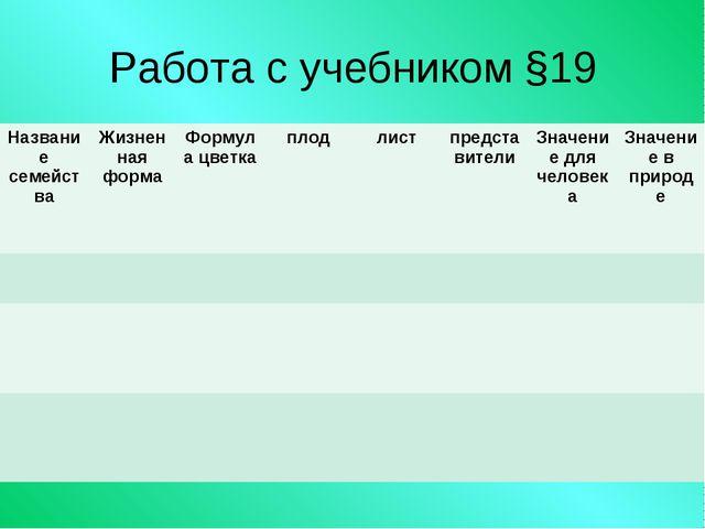 Работа с учебником §19 Название семействаЖизненная формаФормула цветкаплод...