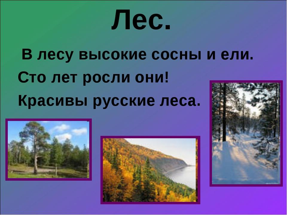 Лес. В лесу высокие сосны и ели. Сто лет росли они! Красивы русские леса.