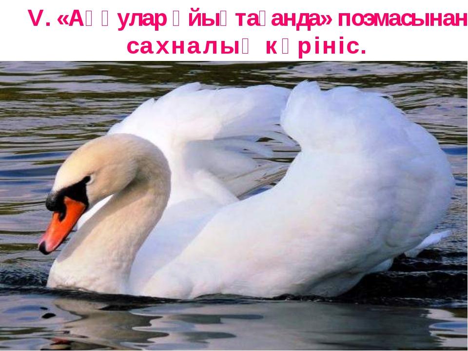 V. «Аққулар ұйықтағанда» поэмасынан сахналық көрініс.