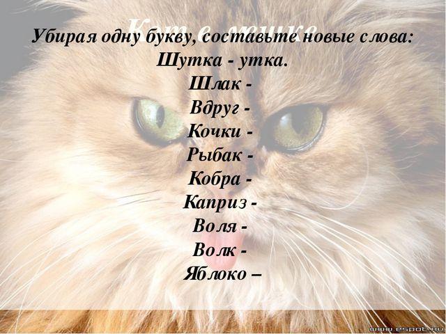 Кот в мешке Убирая одну букву, составьте новые слова: Шутка - утка. Шлак - Вд...