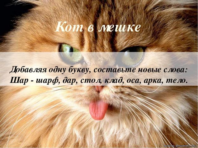 Кот в мешке Добавляя одну букву, составьте новые слова: Шар - шарф, дар, стол...
