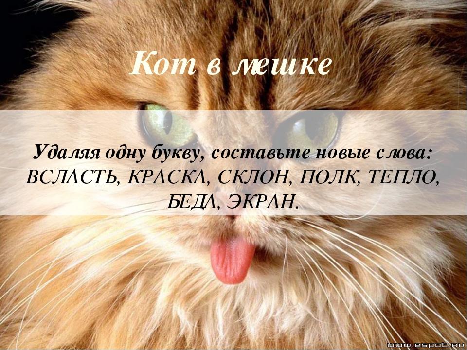 Кот в мешке Удаляя одну букву, составьте новые слова: ВСЛАСТЬ, КРАСКА, СКЛОН,...