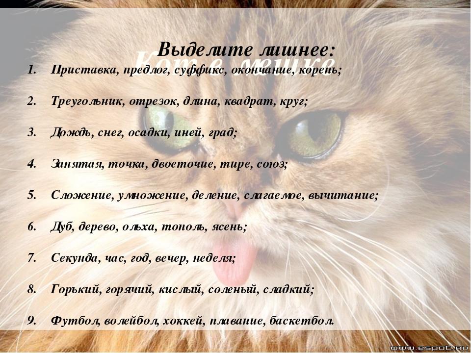 Кот в мешке Выделите лишнее: Приставка, предлог, суффикс, окончание, корень;...