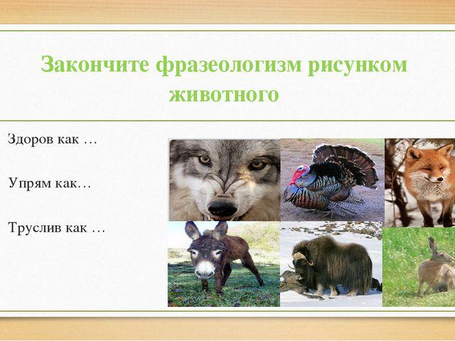 Закончите фразеологизм рисунком животного Здоров как … Упрям как… Труслив как …