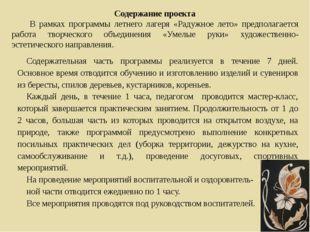 Содержание проекта В рамках программы летнего лагеря «Радужное лето» предпола