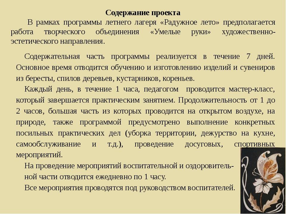 Содержание проекта В рамках программы летнего лагеря «Радужное лето» предпола...