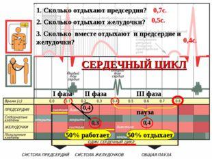 I фаза II фаза III фаза пауза СЕРДЕЧНЫЙ ЦИКЛ 0,3 0,4 0,4 50% работает 50% отд