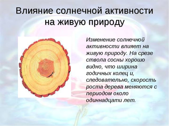 Влияние солнечной активности на живую природу Изменение солнечной активности...
