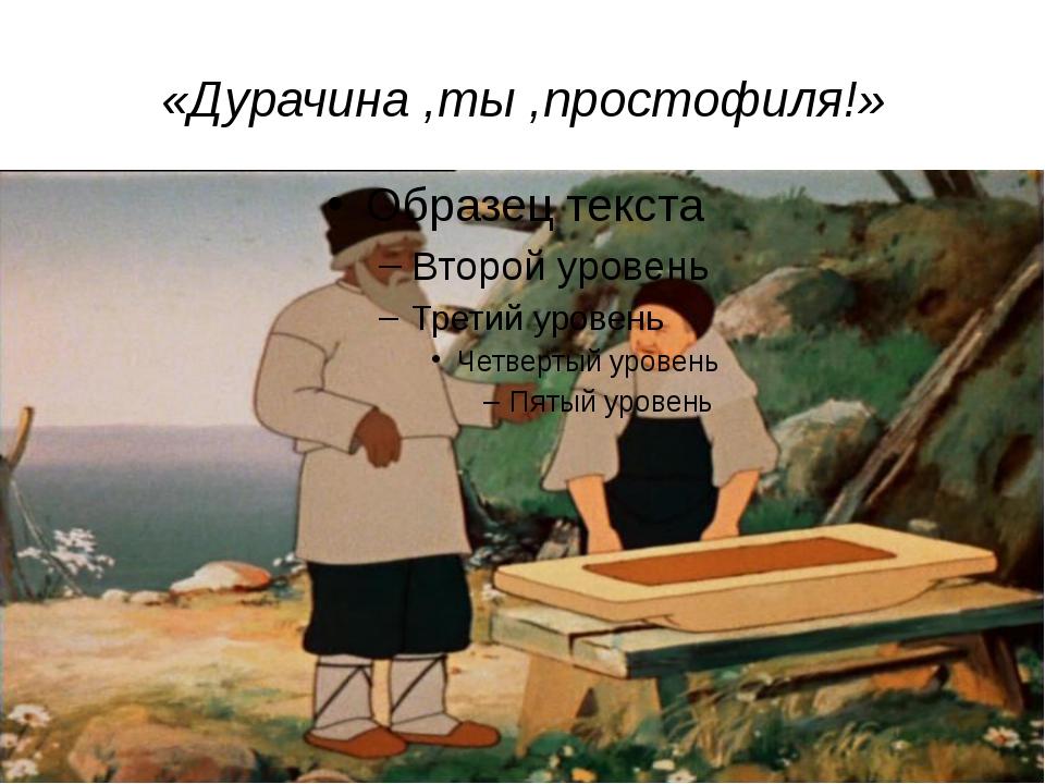 «Дурачина ,ты ,простофиля!»