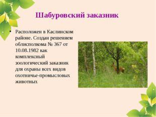 Шабуровский заказник Расположен в Каслинском районе. Создан решением облиспо