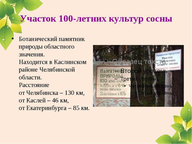 Участок 100-летних культур сосны Ботанический памятник природы областного зна...
