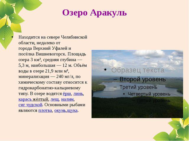 Озеро Аракуль Находится на севере Челябинской области, недалеко от городаВер...