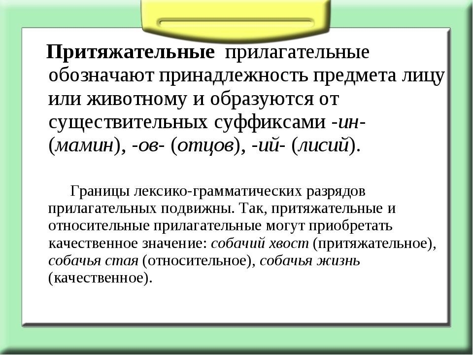 Притяжательные прилагательные обозначают принадлежность предмета лицу или ж...