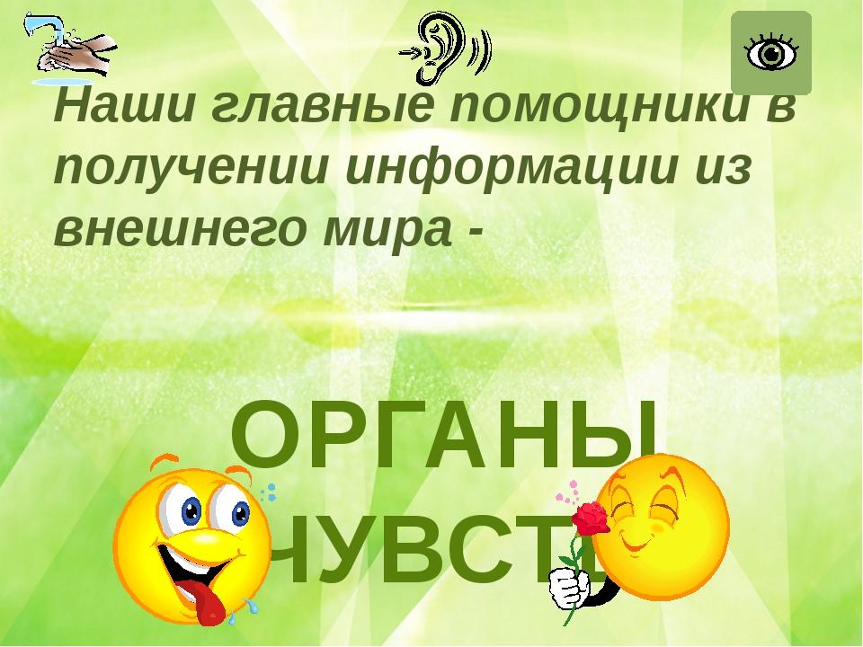 Наши главные помощники в получении информации из внешнего мира - Юматова Ната...