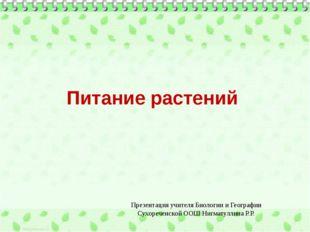 Питание растений Презентация учителя Биологии и Географии Сухореченской ООШ Н