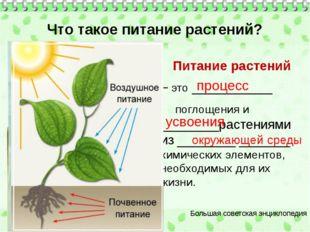 Что такое питание растений? Питание растений – это ___________ поглощения и