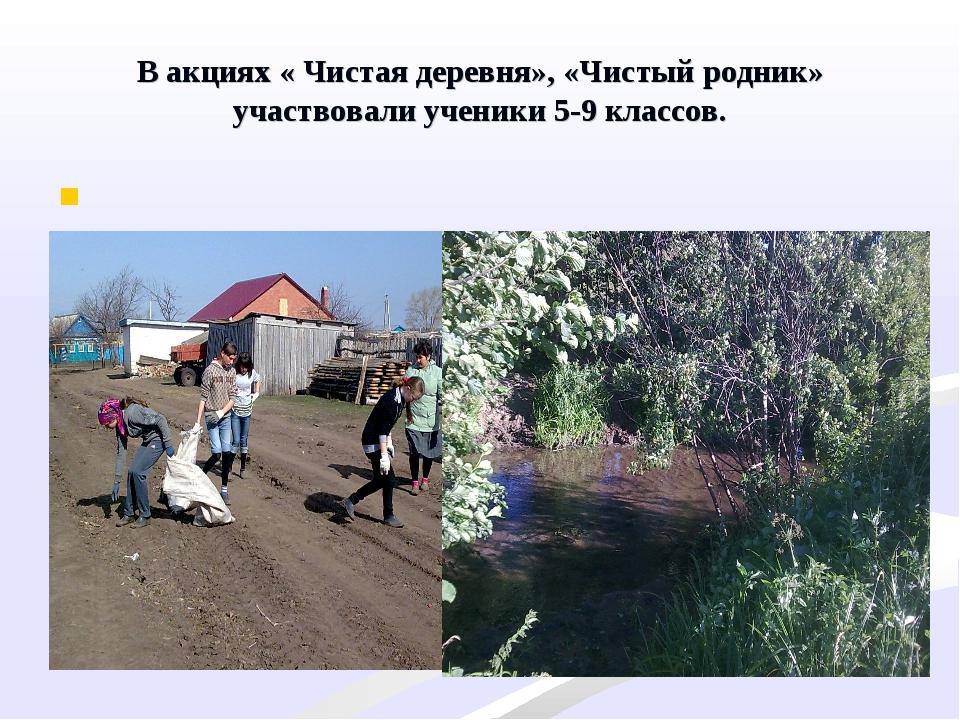 В акциях « Чистая деревня», «Чистый родник» участвовали ученики 5-9 классов.