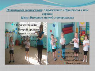 Пальчиковая гимнастика: Упражнение «Прилетела к нам сорока» Цель: Развитие ме