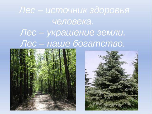 Лес – источник здоровья человека. Лес – украшение земли. Лес – наше богатство.