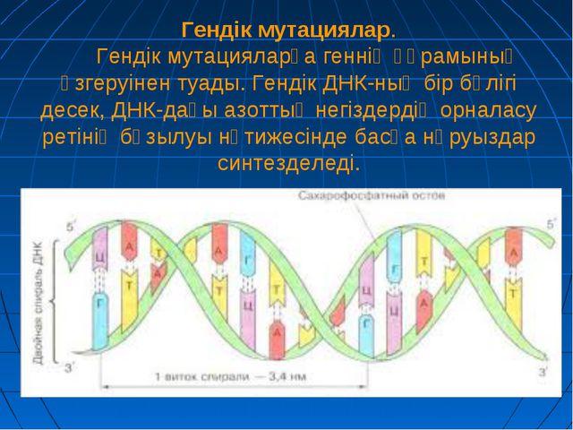 Гендік мутациялар. Гендік мутацияларға геннің құрамының өзгеруінен туады. Ге...