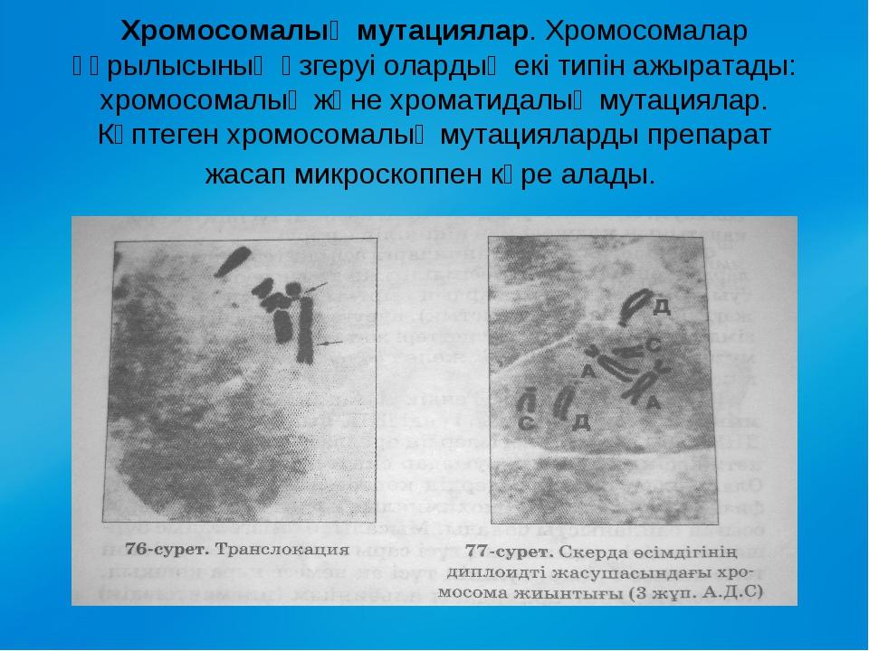 Хромосомалық мутациялар. Хромосомалар құрылысының өзгеруі олардың екі типін...