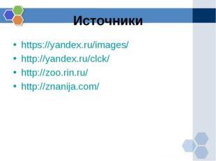 Источники https://yandex.ru/images/ http://yandex.ru/clck/ http://zoo.rin.ru/