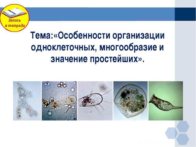 Тема:«Особенности организации одноклеточных, многообразие и значение простейш...