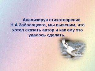 Анализируя стихотворение Н.А.Заболоцкого, мы выясним, что хотел сказать авто